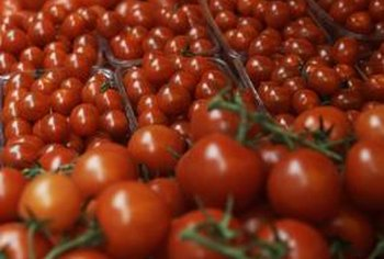 Tomatoes grown hydroponically have specific nutritional needs.