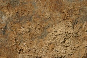 Clay soils form a hard crust when they dry out.