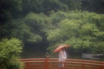 Japanese garden bridges are often simple wooden structures spanning garden water features.