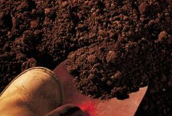 Good soil preparation is key to growing a successful garden.