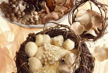 Fresh mushrooms grow well in home environments.