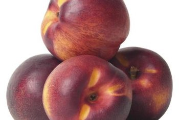 Nectarines are similar to peaches, without the fuzz.