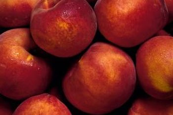 To produce quality fruit, nectarine trees need full sun.