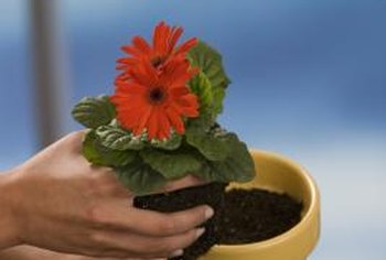 Properly stored soil will result later in healthier plants.