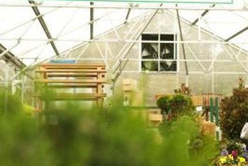 A greenhouse allows gardeners the chance to get a jumpstart on the season.