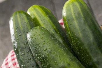 A large number of cucumbers grow well in containers.