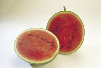 Miniature watermelons are sometimes called dwarf or personal melons.
