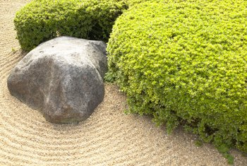 A Japanese garden can be as simple as a carefully placed stone.