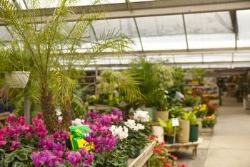 A warm and sunny greenhouse extends the growing season.