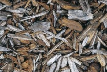 The natural hardwood mulch is slowly weathering to a silver-gray color.
