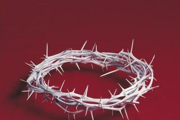 Some people believe Jesus' crown of thorns was made from this plant.