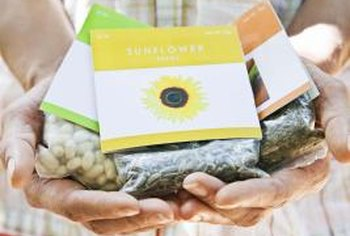 Flower seeds are an inexpensive way to get plenty of plants.