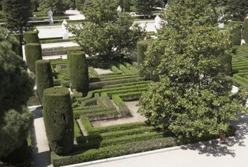 Topiary includes a wide variety of sculpted plant shapes.