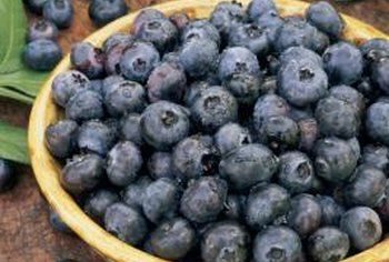 Blueberries contain phytonutrients called anthocyanins.