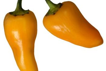 Banana peppers get their name from their long, slightly bent shapes.