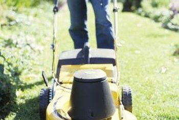 Lawns need to be mowed, even in dry conditions.