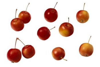 Crabapples are shades of red, orange, yellow or green.