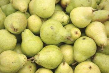 "Don't expect a fruit as delicious as the ""Bartlett"" pear from the Manchurian."