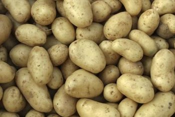 Potatoes are easy to grow and adapt well to most growing conditions.