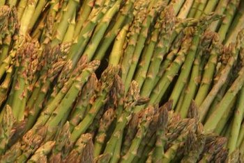 Asparagus is a dependable home garden crop.