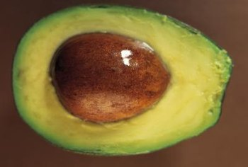 The Hass avocado has creamy, pale green flesh.