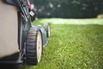 Mowing wet grass in passes less than one-half the lawn mower's width minimizes clumping.