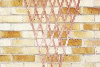 Trellises offer support for vining plants.