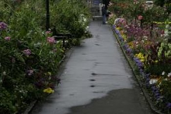 Flowers for Landscaping a Front Sidewalk | Home Guides | SF Gate