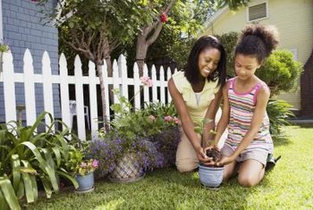 The potting soil you use depends on the plants you grow.