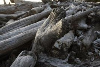 Driftwood offers natural design features for home decor.