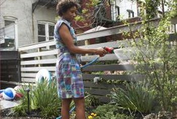 Spraying plants with a blast of water is an effective form of organic pest control.