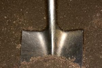 Good garden soil is easy to dig and absorbs water quickly.