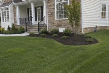 Fertilizing and liming your lawn keeps the grass green and healthy.