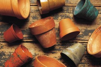 Soak terracotta pots in water before filling with soil to help retain moisture.