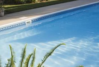 Plants provide interest to your swimming pool oasis.