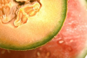 Cantaloupe have been cultivated in the Americas for over 400 years.