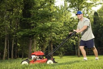 Slowly mowing around trees reduces damage to the roots and bark.
