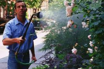 A high-pressure tree sprayer is necessary when spraying foliage that cannot be reached with an ordinary sprayer.