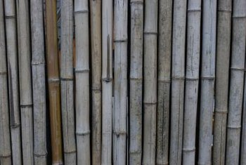 Bamboo fencing adds tropical appeal to your yard without having to completely replace your fence.