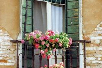 A warm arrangement of trailing zonal geraniums enlivens a cold metal balcony railing.