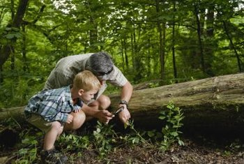 Why people should respect their environments communities home learning to love nature from a young age fosters a healthy respect for the environment publicscrutiny Gallery