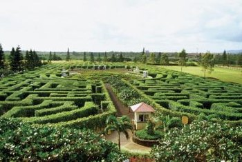 Garden mazes are a fun addition to your outdoor space.