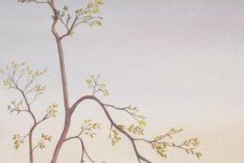 Room paint designs tree