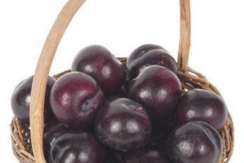 Grow your own fresh plums at home.