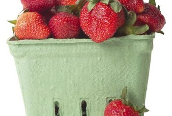 Incorporate a good strawberry potting mix in your garden soil for juicy berries.