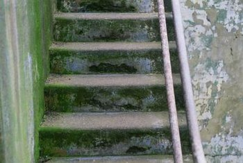 You can dress up your discolored concrete stairs quickly using paint.