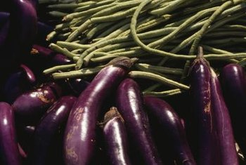 Eggplants require long, warm summers to fruit well.