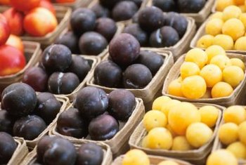 Shiro plums have yellow skin and mild, sweet flesh.