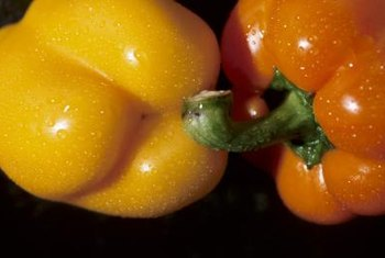 Composted manure provides essential nutrients to growing peppers.