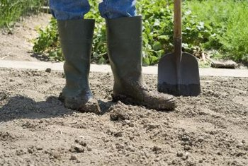 Creating well-draining soil requires little more than a shovel and compost.